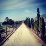 På väg mot Lasoya